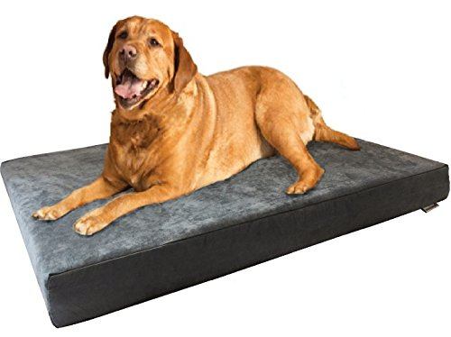 Dogbed4less XL Orthopedic Memory Foam Dog Bed with Machine Washable Cover, Waterproof Lining for Medium to Large Pet, 47X29X4 Pad Fit 48X30 Crate