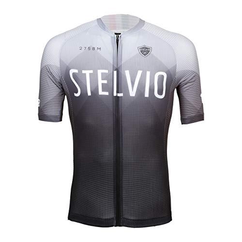Level Jersey Stelvio, Maglia da Ciclismo Passi Stelvio Gavia Mortirolo, Grigio Sfumata, Unisex (M)