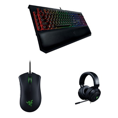 Razer Full Chroma - Ratón gaming DeathAdder Elite + Teclado Gaming...
