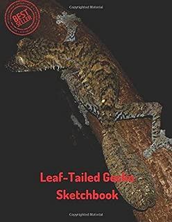 Best art gecko sketchbook Reviews