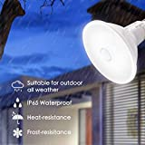Photo #8: Motion Sensor Light Bulb by Sengled With Waterproof 5000K 1050LM And Outdoor LED Light Bulbs 4 Pack