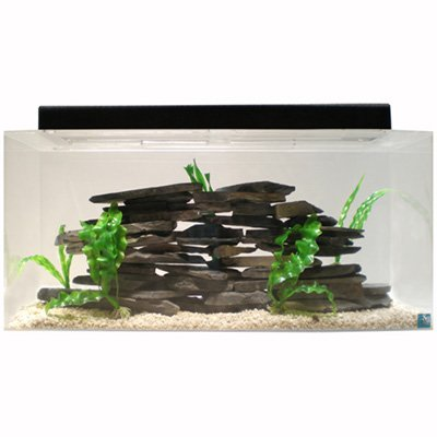 SeaClear 30 gal Show Acrylic Aquarium Combo Set, 36 by 12 by 16