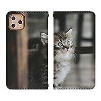 Xperia Z5 SOV32 ベルトなし 手帳型 スマホケース スマホカバー bn767(B) 猫 ねこ ネコ 動物 アニマル エクスペリア スマートフォン スマートホン 携帯 ケース エクスペリアZ5 手帳 ダイアリー フリップ スマフォ カバー