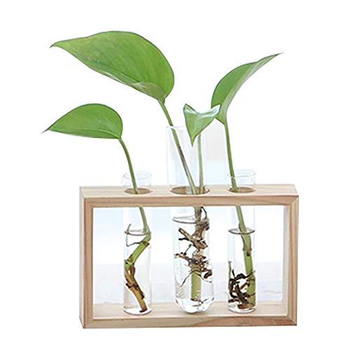 BulzEU Pflanzenhalter für drinnen, Reagenzglas Blumen-Halter, Holzständer, hängende Pflanzgefäße für Hydrokulturpflanzen, Zuhause, Café, Party, Hochzeit, Büro, Café, Tischdekoration