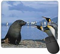マウスパッド ゲーミングマウスパット 皇帝ペンギン 高級感 最適 高級感 おしゃれ 防水 耐久性が良い 滑り止めゴム底 ゲーミングなど適用 マウスの精密度を上がる 疲労軽減 作業 マウスパット ( 25*30 Cm )