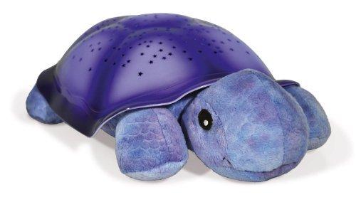 Twilight Turtle - Purple Color: Purple