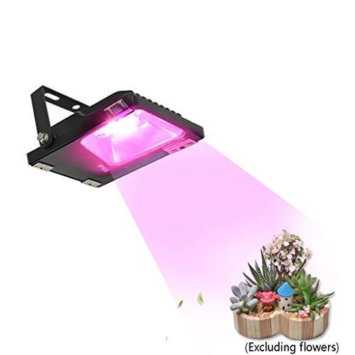 HOMZYY LED plantengroeilamp 10 LED rode en blauwe plantengroeilamp indoor-tuin kas pot pot planten licht