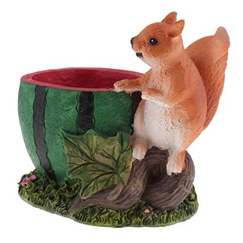 non-brand Sharplace Pot Succulent Boîte de Rangement écureuil Planteur Melon d'eau Cadeau Décoration