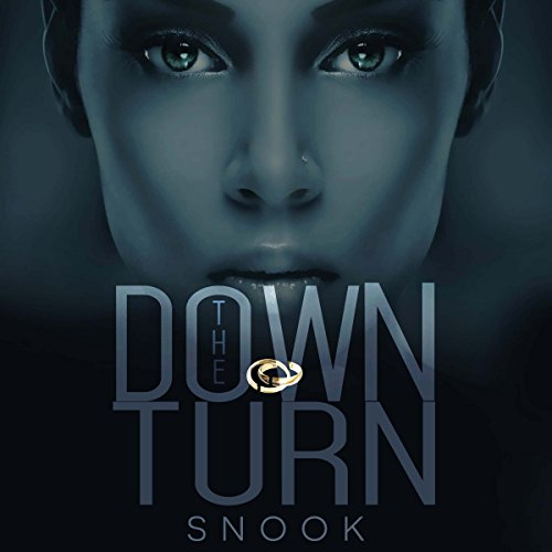 The Down Turn audiobook cover art