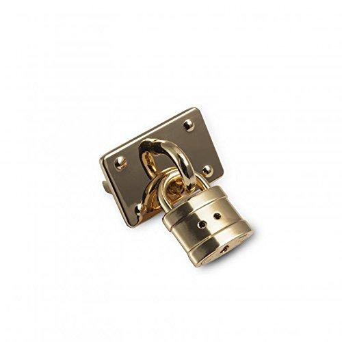 Attaques métalliques à cadenas avec ailettes arrière, or