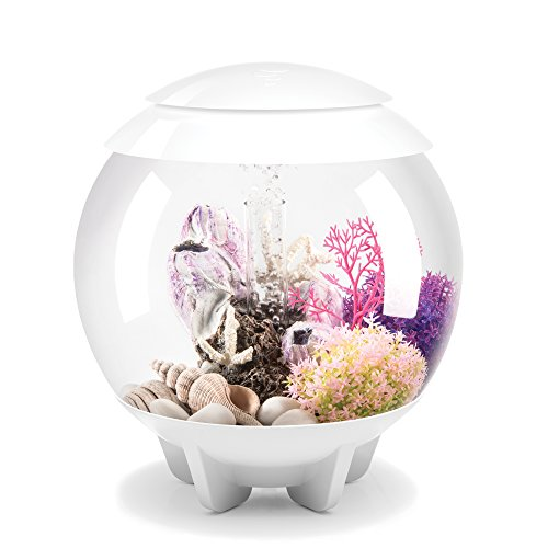 biOrb HALO 15 Aquarium with MCR Lighting - 4 gallon, White