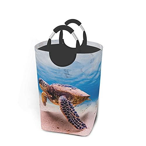 Bxfdc Cesto de lavandería Marine Life Turtle Cesto de lavandería Papelera de Lavado Plegable Organizador de Ropa Sucia con Asas 50 L