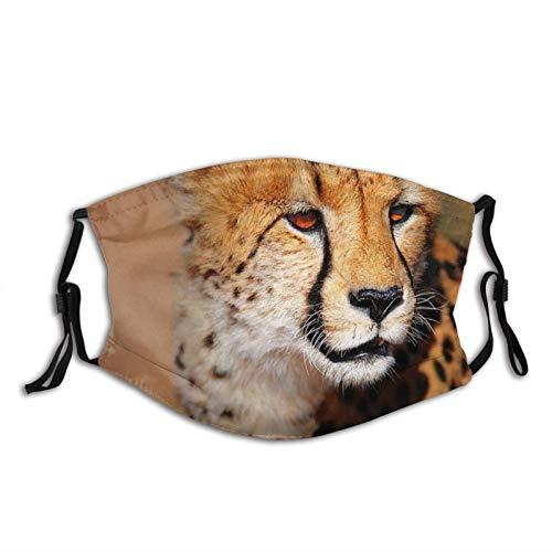 Cheetah - Máscara facial unisex para pasamontañas con filtro, resistente al viento, a prueba de polvo, máscara ajustable
