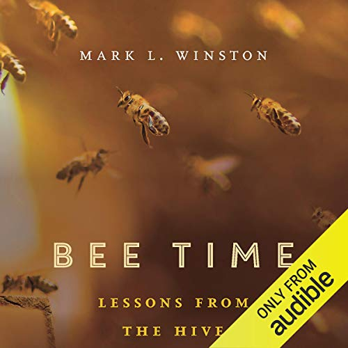 Bee Time Titelbild