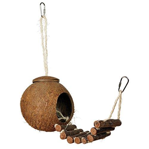 CandyTT Cómodo diseño Lindo cáscara de Coco Natural casa de anidación de Aves tamaño pequeño periquitos para Mascotas pinzones Jaula de gorriones con Escalera (Color Madera con Piel)