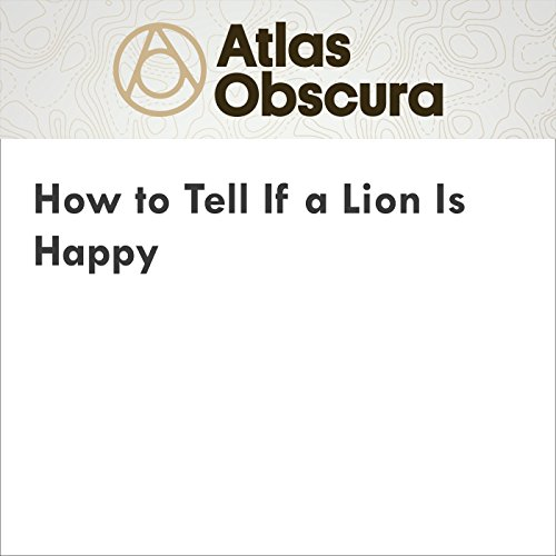 How to Tell If a Lion Is Happy audiobook cover art
