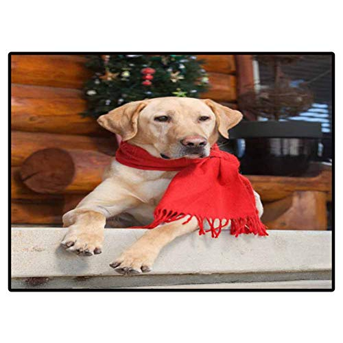 Soft Indoor Large Modern Area Rugs Yellow lab Sitting on Cabin Porch During Holidays Bedroom Home Nursery Yoga Mats 4 x 5 Ft