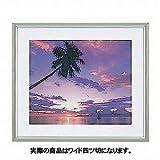 ナカバヤシ アルミ製写真額縁(山型) ワイド四ツ切判 フ-SA-115