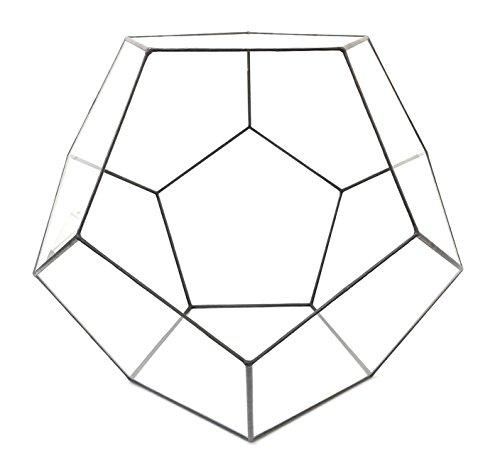 Terrarium Dodécaèdre avec kit de terrarium, plantes/s, outils et guide étape par étape - Emballé en Angleterre (grande taille, patine noire)