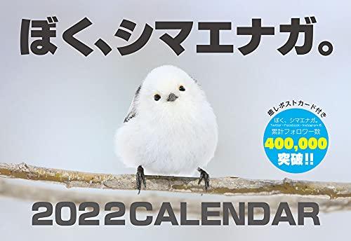ぼく、シマエナガ。 2022 壁掛け カレンダー A4