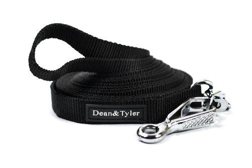Dean & Tyler Doppellagige Nylon-Hundeleine mit Herm Sprenger Hardware, 2,5 m x 1,9 cm, schwarz
