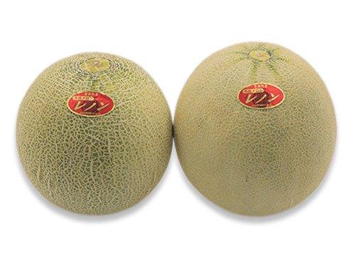 フルーツなかやま 赤肉 メロン<2個入> 重さ900g以上/ 糖度13度以上 /大きさ10cm以上