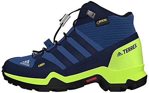 adidas Terrex Mid GTX K, Chaussures de Randonnée Hautes Garçon Mixte Enfant, Bleu (Azretr/Maruni/Limsol 000), 28.5 EU