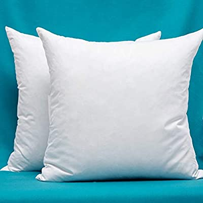 Set of 2, Cotton Fabric Pillow Inserts, Filled with Down and Feather Decorative Throw Pillows Inserts, 26 x 26 Inches