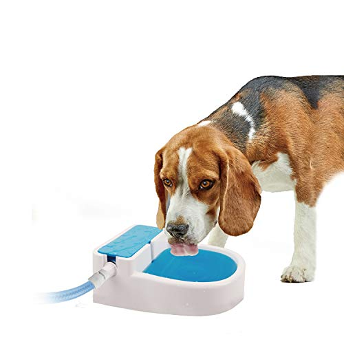 All for Paws Chill Out Dog Water Fountain Outdoor Garden Auto-Filling Water Dispenser, Always Provides Fresh Water for Animals, Hose Connector Included, 50oz