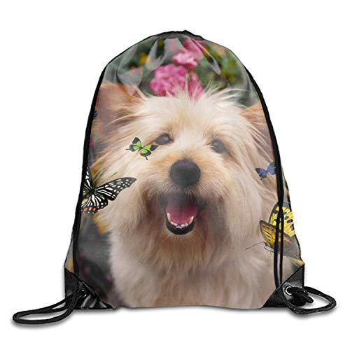 uykjuykj Australian Terrier Dog Print Drawstring Backpack Rucksack Shoulder Bags Gymsack Sackpack Australian Terrier dog9 Lightweight Unique 17x14 IN