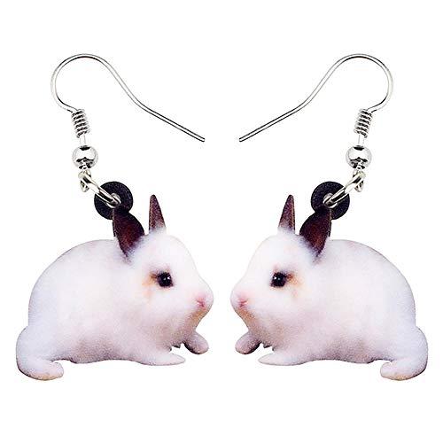 HBHBS Acryl Osterhase Kaninchen Hase Ohrringe Big Dangle Drop Neuheit Tier Schmuck Für Frauen Mädchen Damen Teens Großhandel