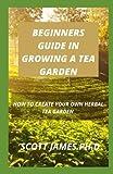 Guía para principiantes en cultivar un jardín de té: Cómo crear tu propio jardín de té de hierbas