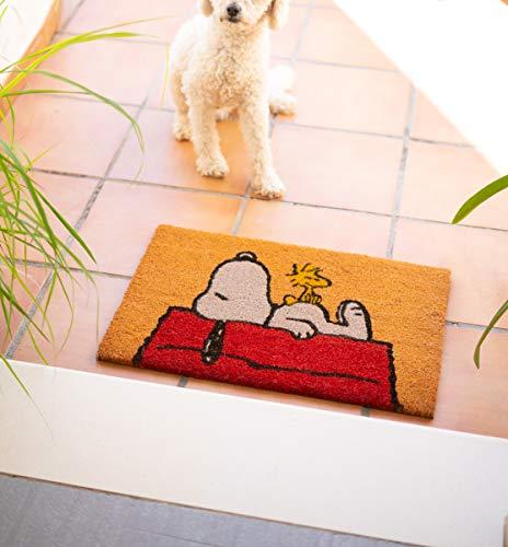 Felpudo Snoopy - Felpudo entrada casa antideslizante 40 x 60 cm - Alfombra entrada casa exterior, Fabricado en fibra de coco - Productos con licencia oficial