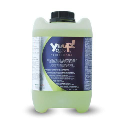 Yuup! Shampoo universale professionale super detergente per cani (1 litri, 5 litri) – pH neutro, senza parabeni, senza SLES & SLS, senza ftalati e fosfati
