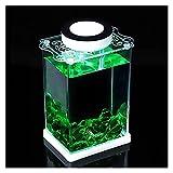 DIWA Mini Acuario, Tanque de Peces de Micro Paisaje Transparente Cuadrado, con Tapa y LED, para el hogar/Oficina/Escritorio (1.4L / 0.36 galones) (Color : Green A)