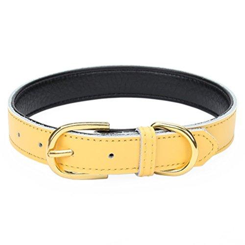 Mcdobexy Klassische weiche gepolsterte Leder Hundehalsband für Katzen Welpen kleine mittelgroße Hunde(Yellow,XS)