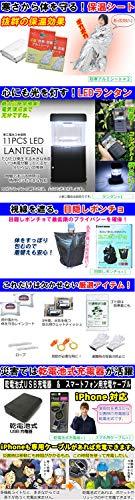 ペアクレーン『ヘルメット付き防災セットDX(2人用)』