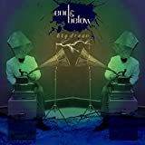 Big Dream (Aquavit Strange Weather Remix)
