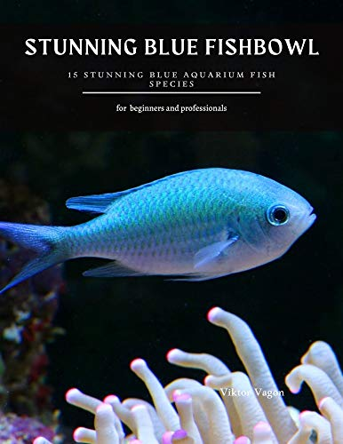 STUNNING BLUE FISHBOWL: 15 Stunning Blue Aquarium Fish Species (English Edition)