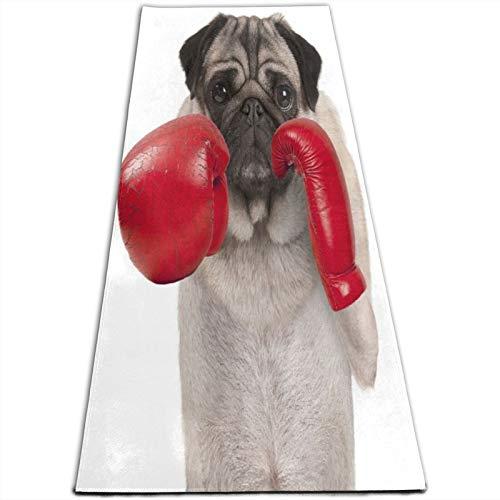 KASABULL Yogamatte mit coolem Mops-Motiv, Boxhandschuhe aus rotem Leder, 5 mm dick, Pilates-Trainingsmatten für Zuhause, Workout, Fitnessstudio, Fitness, Meditations-Teppich