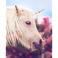 Unicorn Corner Unicorn Horn for Horses: White