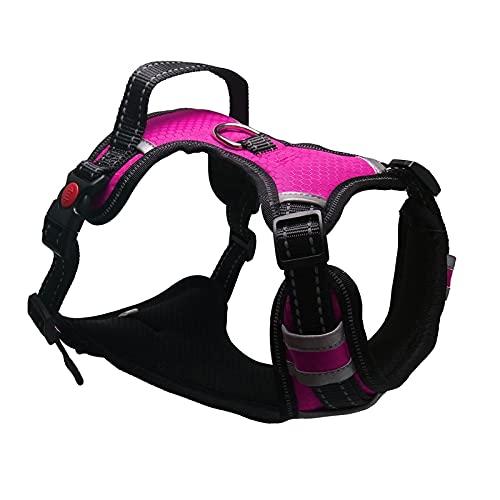 Arnés para perros Harness Breathable No Pull Small Medium Large Dog Vest Adjustbale Matching Leash Collar Reflective Pet Training Supplies Arnés para gatos (Color : D, Size : S (Chest 40-70cm))