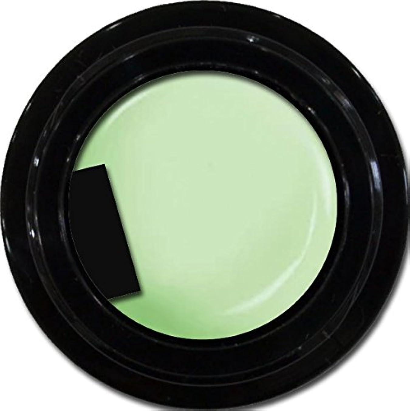 適切に廃止する今カラージェル enchant color gel M711 Fresh Green 3g/ マットカラージェル M711 フレッシュグリーン 3グラム