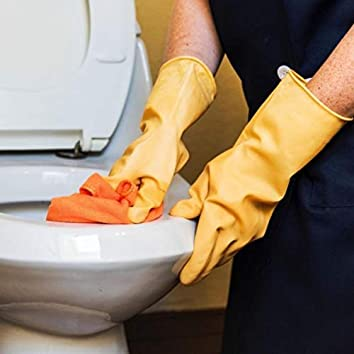 Cleaning The Toilet (Deluxe)