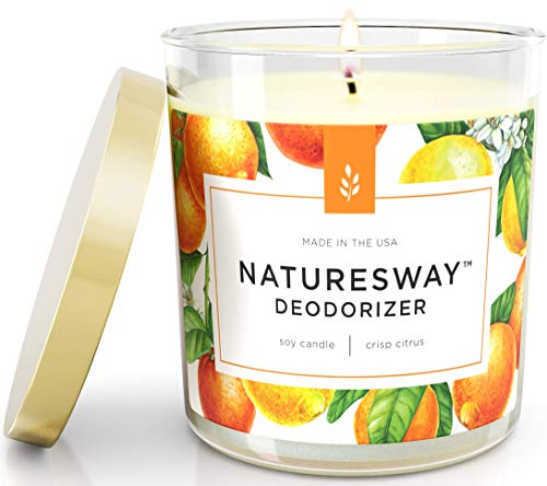 Crisp Citrus Pet and Smoke Odor Eliminating Scented Candle | Non-Toxic Long Lasting Soy Candles | Attractive Design | 12.5 oz Jar | Hand Made in The USA