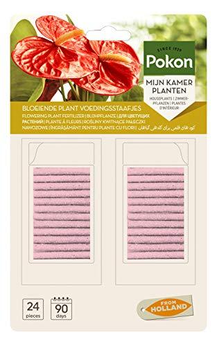Pokon Blühpflanzen Düngerstäbchen, für alle blühenden Zimmerpflanzen, 3 Monate Langzeitwirkung, 24 Stück