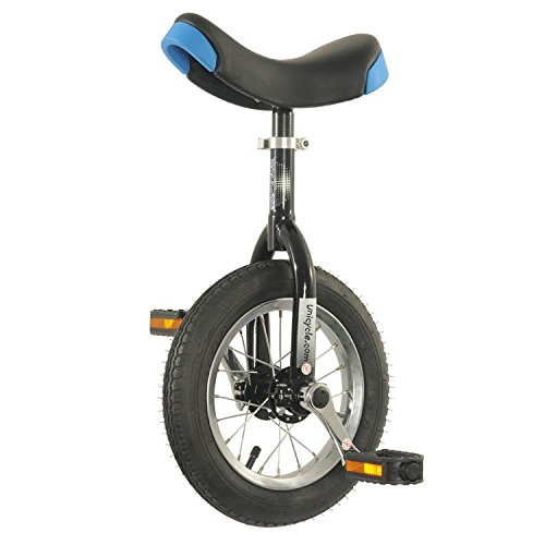 Why Should You Buy Hoppley 12 Unicycle - Perfect Starter for The Beginner Ages 3-5!