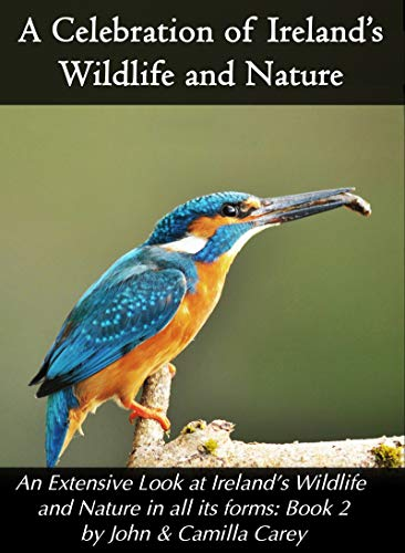 A Celebration of Ireland's Wildlife and Nature: Book 2 (A Celebration of Ireland's Wildlife and Nature: An Extensive Look at Ireland's Wildlife and Nature in all its forms) (English Edition)