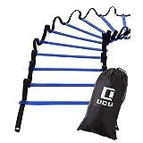 LICLI ラダー トレーニング 野球 サッカー 5m 7m 9m プレート 9枚 13枚 21枚 収納袋付き 3カラー 「 連結可能 スピードラダー 」「 瞬発力 敏捷性 アップ 」「 フットサル テニス 練習 」 トレーニングラダー ladder (ブルー, 7m)