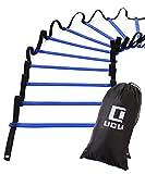 LICLI ラダー トレーニング 野球 サッカー 5m 7m 9m プレート 9枚 13枚 21枚 収納袋付き 3カラー 「 連結可能 スピードラダー 」「 瞬発力 敏捷性 アップ 」「 フットサル テニス 練習 」 トレーニングラダー ladder (ブルー, 5m)